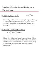 models of attitude and preference formations
