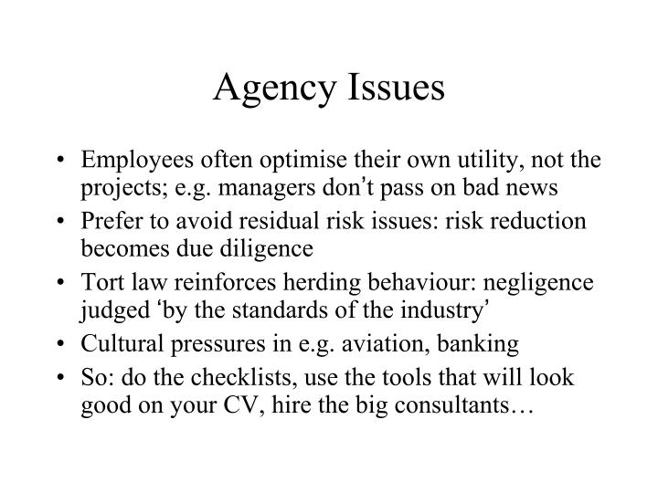 Agency Issues