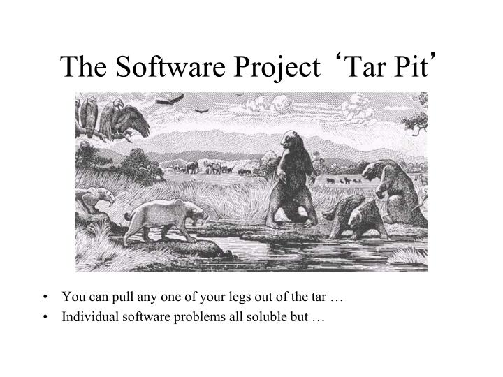 The Software Project