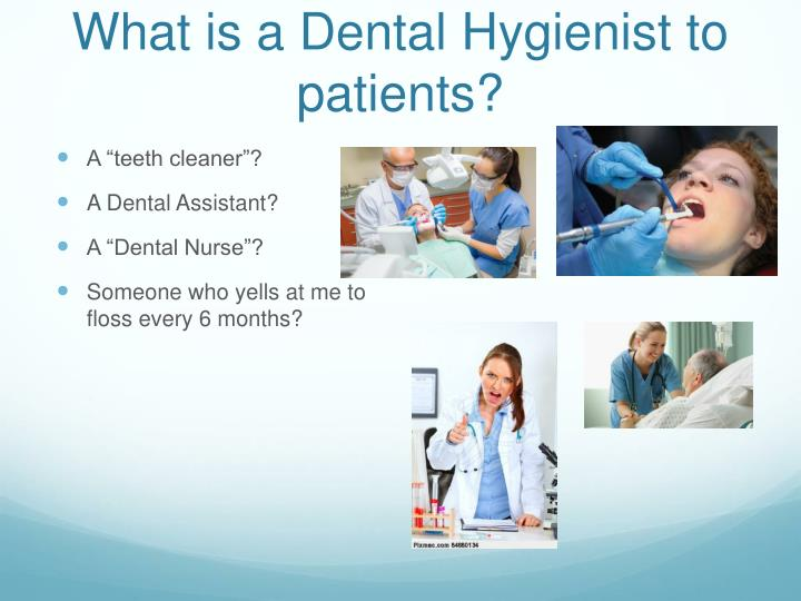 What is a dental hygienist to patients
