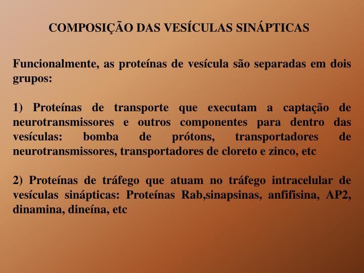 COMPOSIÇÃO DAS VESÍCULAS SINÁPTICAS