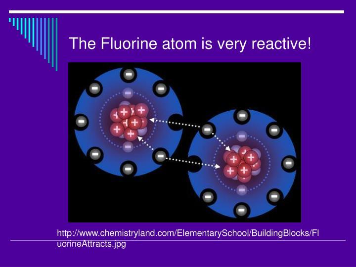 The Fluorine atom is very reactive!