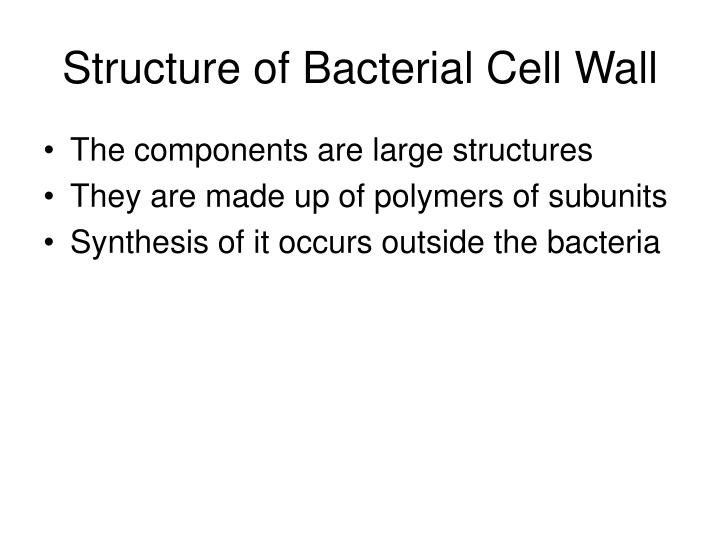 Structure of Bacterial Cell Wall