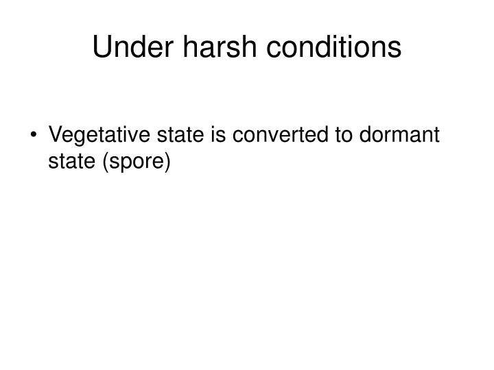 Under harsh conditions