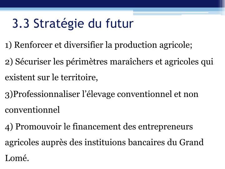 3.3 Stratégie du futur