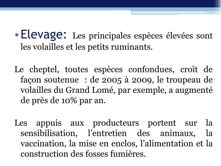 Elevage: