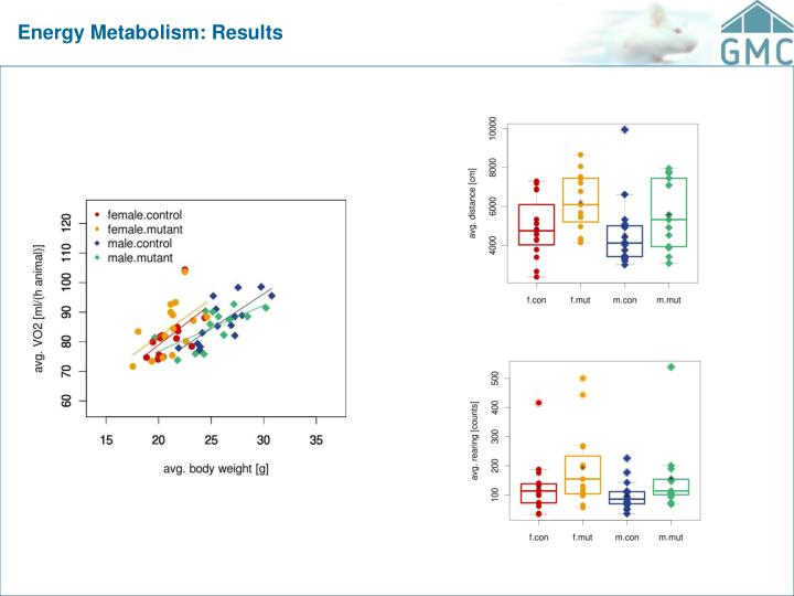 Energy Metabolism: Results