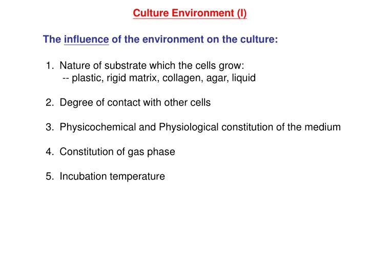 Culture Environment (I)