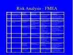 risk analysis fmea