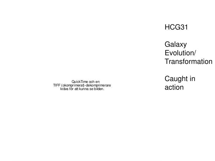 HCG31