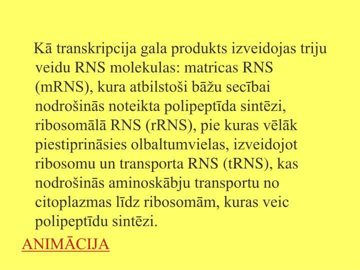 Kā transkripcija gala produkts izveidojas triju veidu RNS molekulas: matricas RNS (mRNS), kura atbilstoši bāžu secībai nodrošinās noteikta polipeptīda sintēzi, ribosomālā RNS (rRNS), pie kuras vēlāk piestiprināsies olbaltumvielas, izveidojot ribosomu un transporta RNS (tRNS), kas nodrošinās aminoskābju transportu no citoplazmas līdz ribosomām, kuras veic polipeptīdu sintēzi.