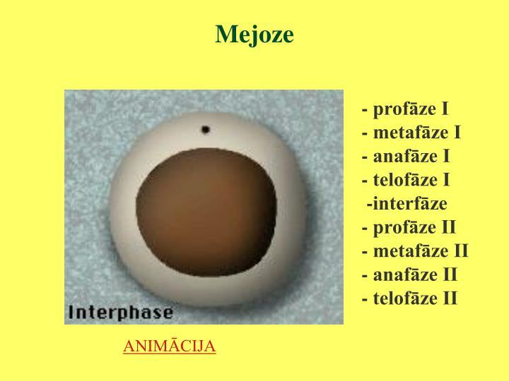 Mejoze