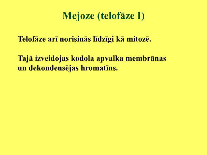 Mejoze (telofāze I)
