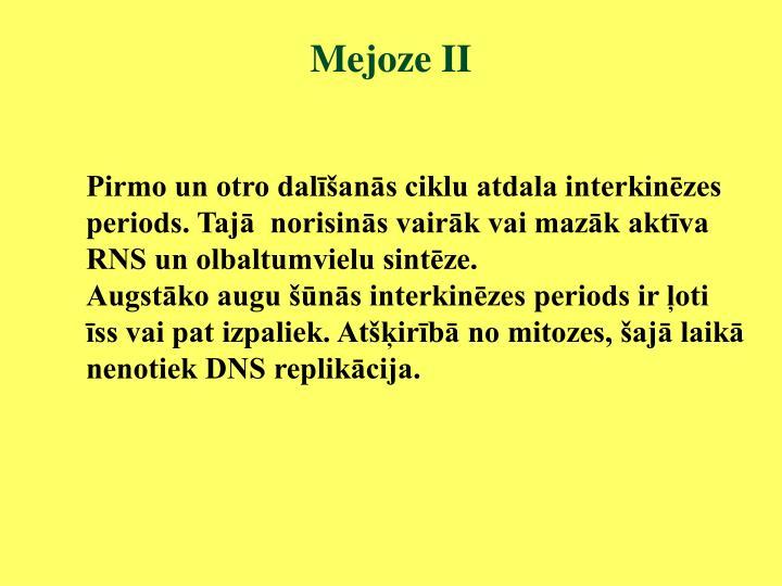 Mejoze II