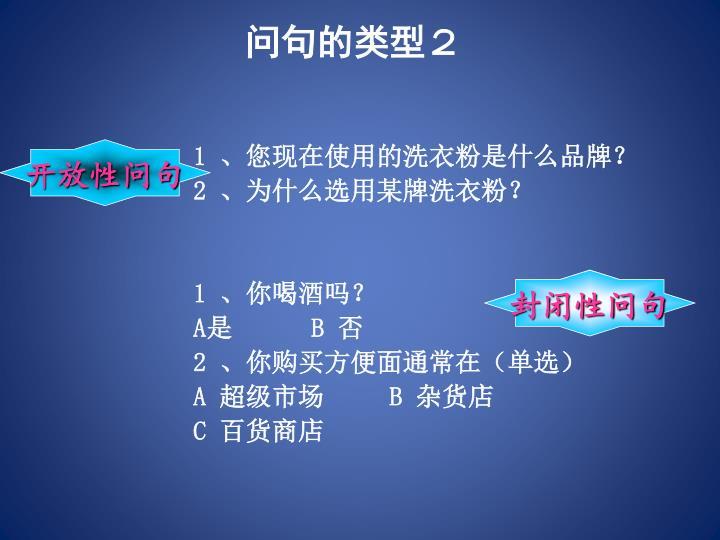 问句的类型2