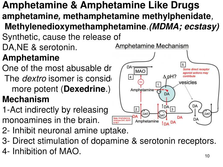 Amphetamine & Amphetamine Like Drugs