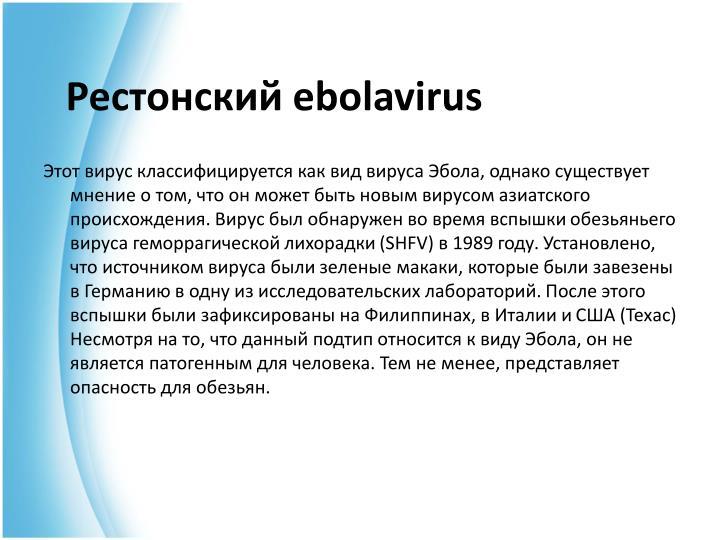 Рестонский ebolavirus