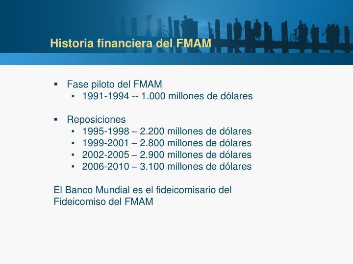 Historia financiera del FMAM