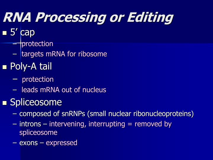 RNA Processing or Editing