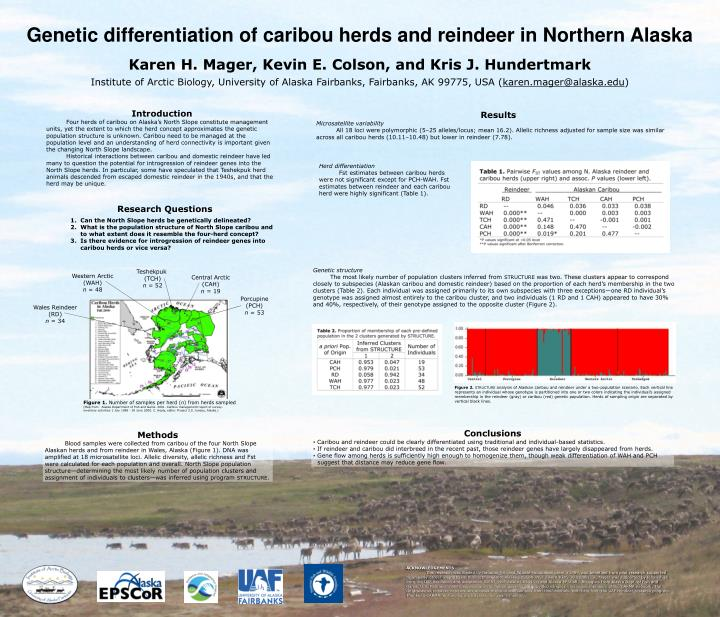 Genetic differentiation of caribou herds and reindeer in Northern Alaska