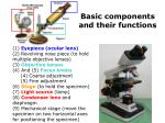 basic components and their functions1