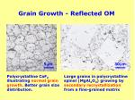 grain growth reflected om