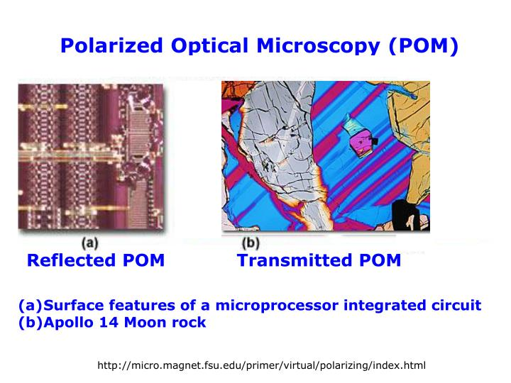 Polarized Optical Microscopy (POM)