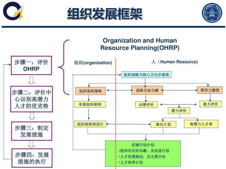 组织发展框架