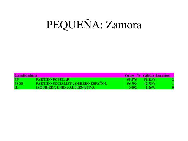 PEQUEÑA: Zamora