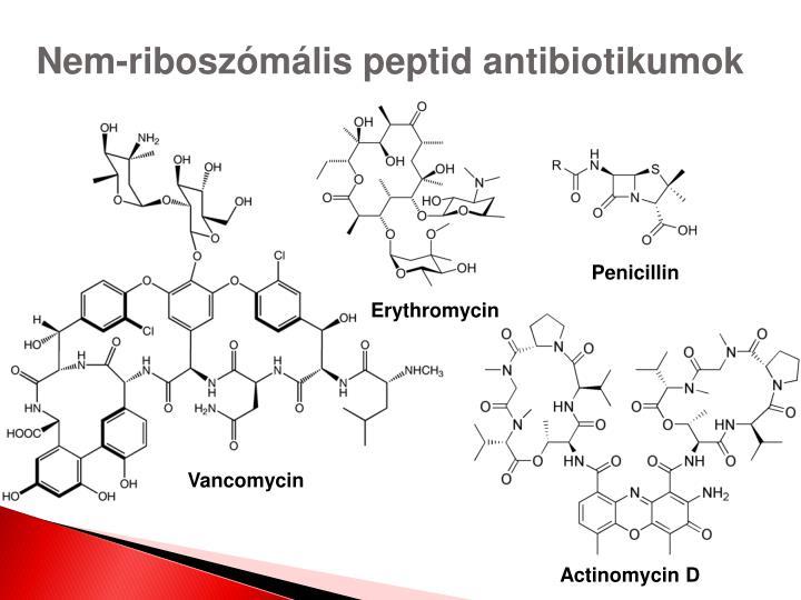 Nem-riboszómális peptid antibiotikumok