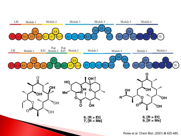 Rowe et al. Chem Biol. (2001)