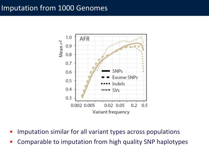 Imputation from 1000 Genomes