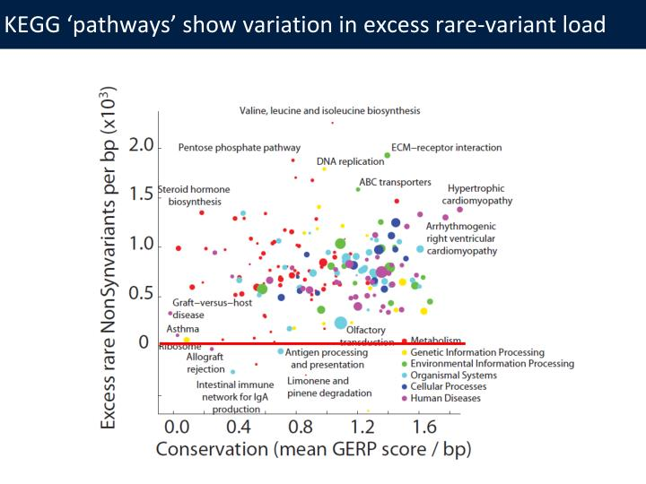KEGG 'pathways' show variation in excess rare-variant load