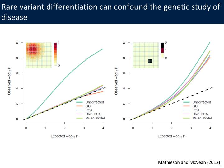 Rare variant differentiation can confound the genetic study of disease