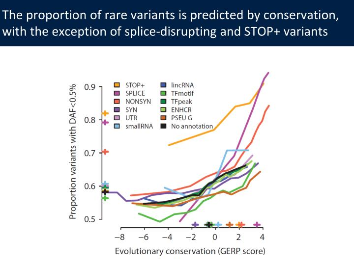 The proportion of rare variants is predicted by conservation, with the exception of splice-disrupting and STOP+ variants