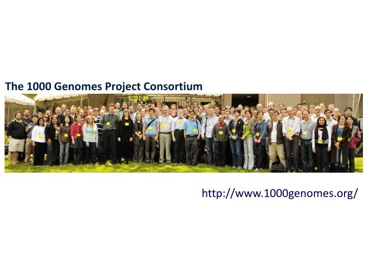 The 1000 Genomes Project Consortium