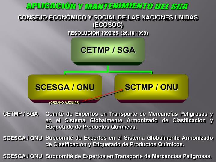 APLICACIÓN Y MANTENIMIENTO DEL SGA