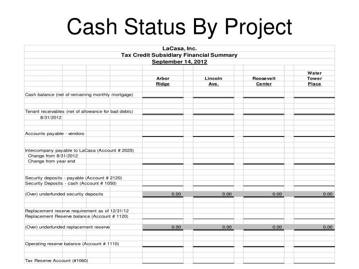 Cash Status By Project
