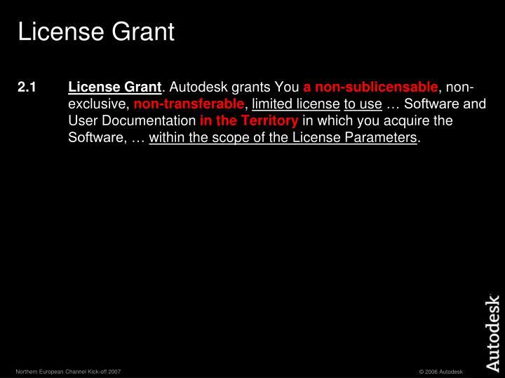 License Grant