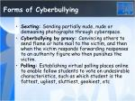 forms of cyberbullying1