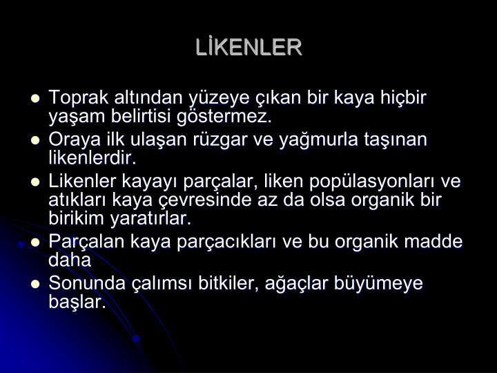LİKENLER