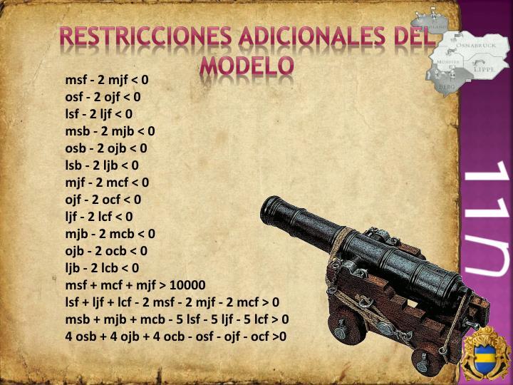 Restricciones adicionales del modelo