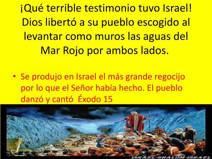 ¡Qué terrible testimonio tuvo Israel! Dios libertó a su pueblo escogido al levantar como muros las aguas del Mar Rojo por ambos lados.