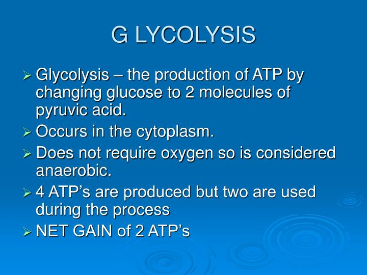 G lycolysis
