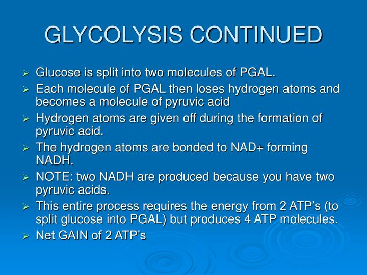 Glycolysis continued