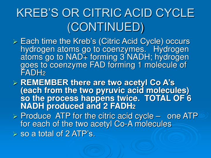 KREB'S OR CITRIC ACID CYCLE (CONTINUED)