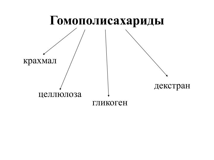 Гомополисахариды