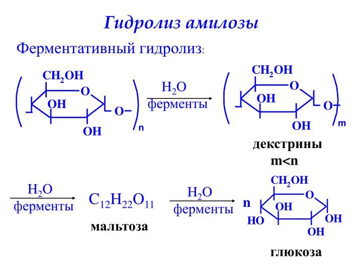 Гидролиз амилозы