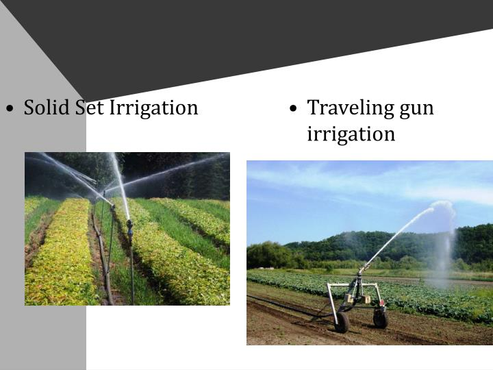 Solid Set Irrigation