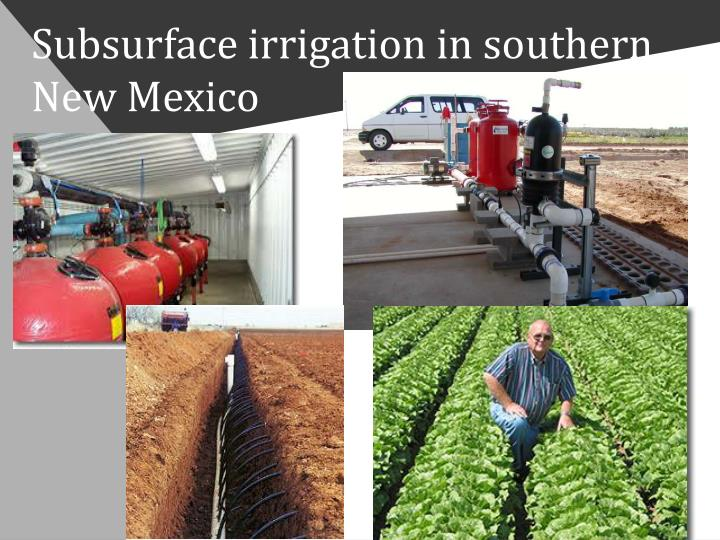 Subsurface irrigation in southern New Mexico